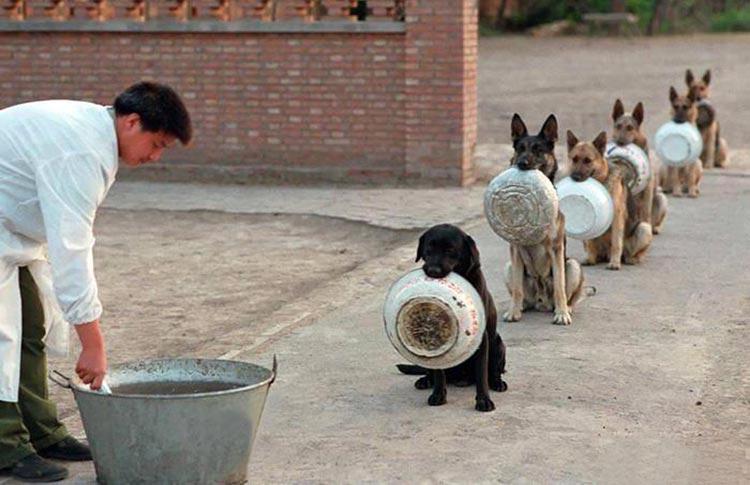 policia-en-china
