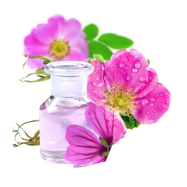 aceite rosa mosqueta2